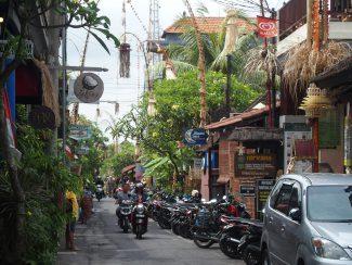 Vakantie Bali in Ubud