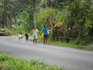 Vakantie op Bali met verblijf in Sidemen