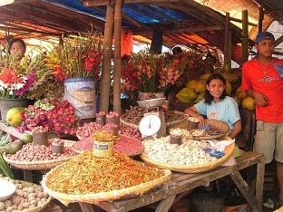 Noord Sulawesi – vervolg virtuele rondreis