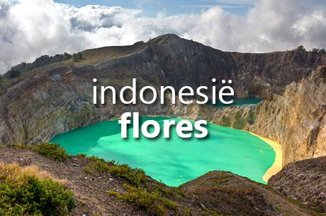 Vakantie naar Indonesië met bezoek aan Flores