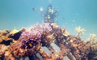 Vakantie-Bali-advies-snorkelen-Pemuteran