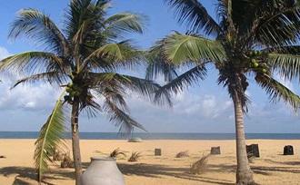 Rondreis - Sri Lanka - natuur - Negombo