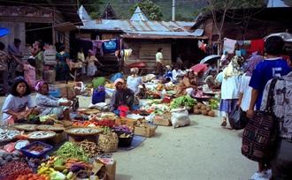 Vakantie - Sumatra - Samosir
