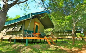 advies op maat - vakantie - Sri Lanka - Yala NP - tentsafari