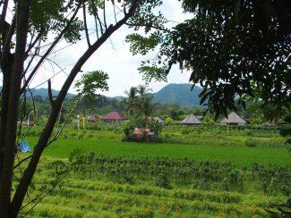 Sidemen op Bali advies op maat rondreis