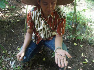 Individuele reis op maat Java