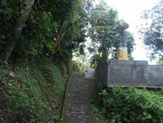 Rondreis individueel op maat Munduk Bali