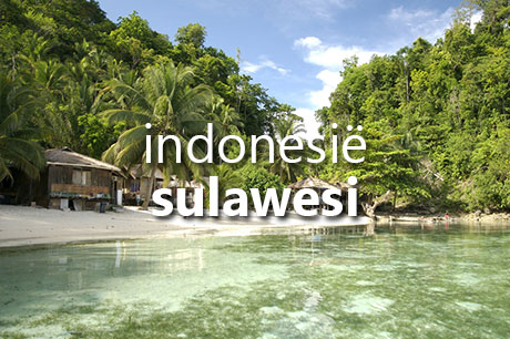 Droomvakantie naar Sulawesi in Indonesië