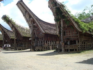 Tanah Toraja op Sulawesi. Tips over Indonesië en Sulawesi.