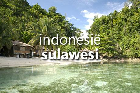 indonesie-sulawesi