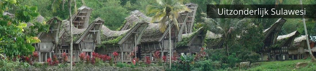 Rondreis-op-maat-Sulawesi-Indonesie