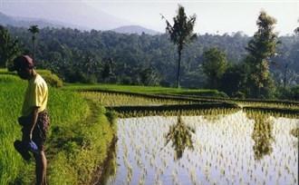 Tetebatu, Lombok. Leer de bewoners kennen tijdens uw rondreis door Indonesië