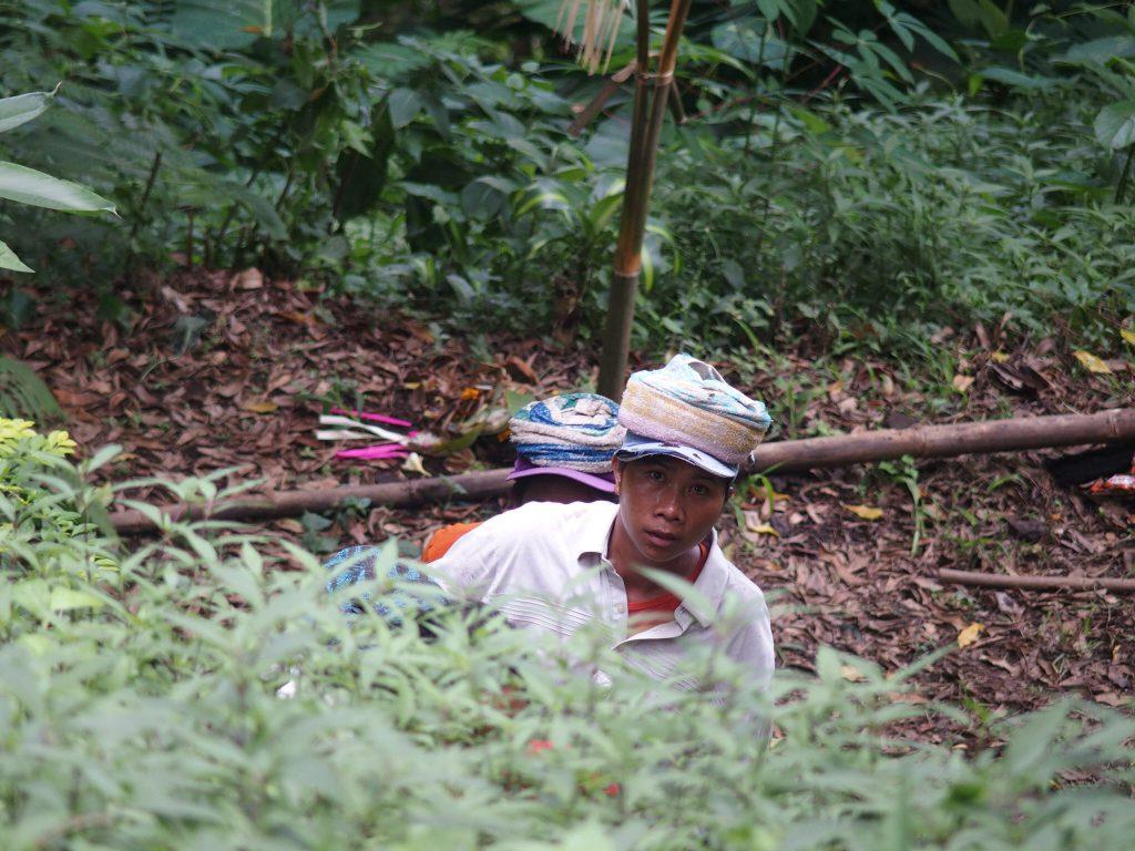 Wandeling rond Munduk op Bali