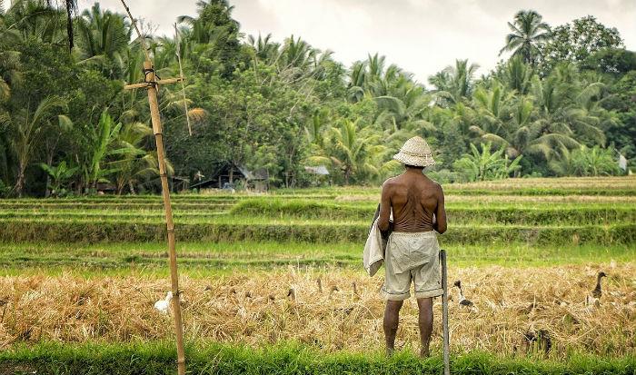 Een rondreis door Bali