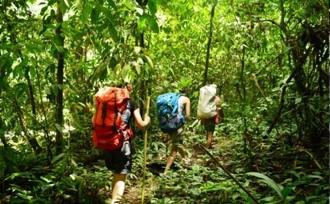 Sumatra - trekking Gunung Leuser