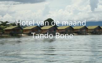 Tando Bone bij Poso meer Sulawesi