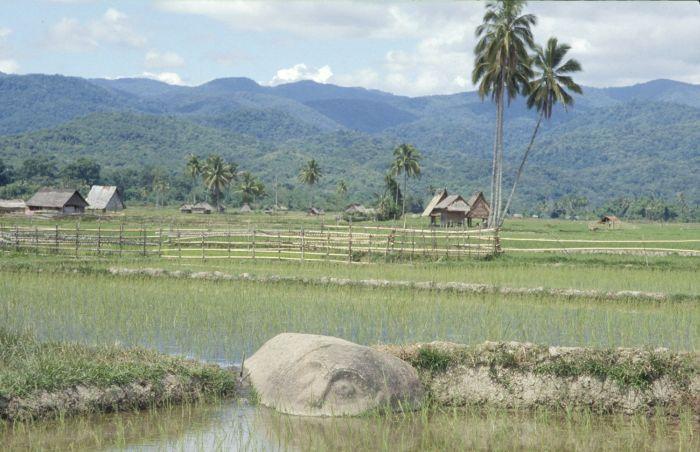 Bada vallei op Sulawesi