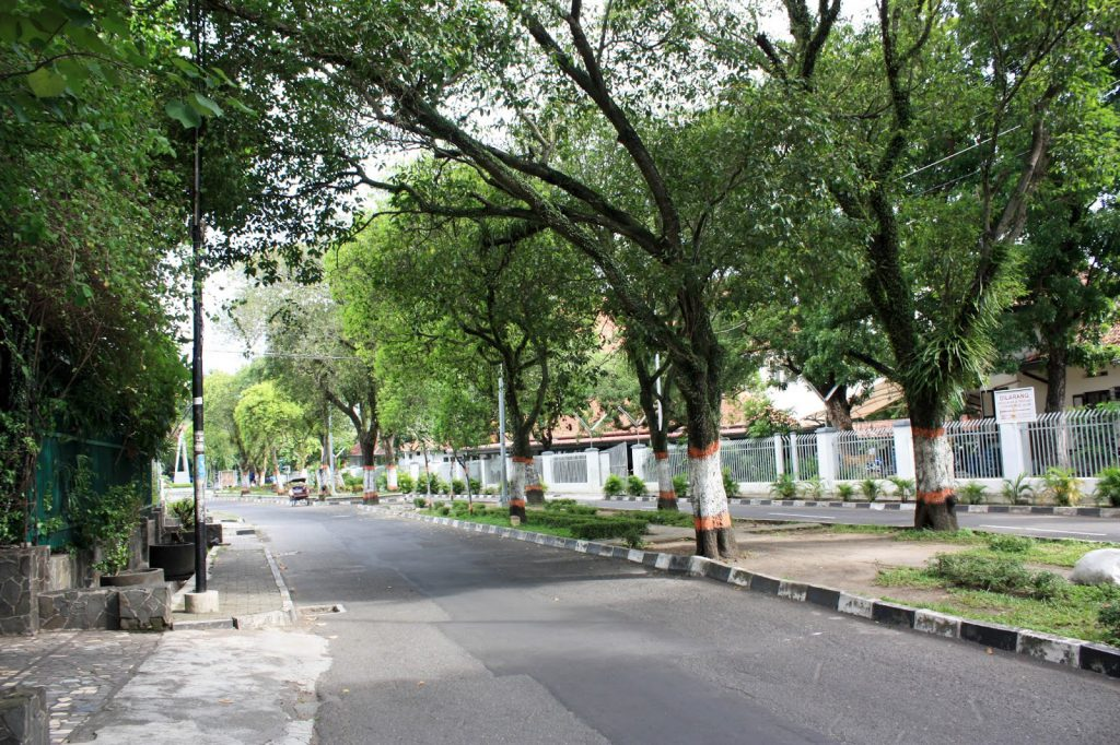wandeling Yogyakarta - reis - Java - Kota Baru