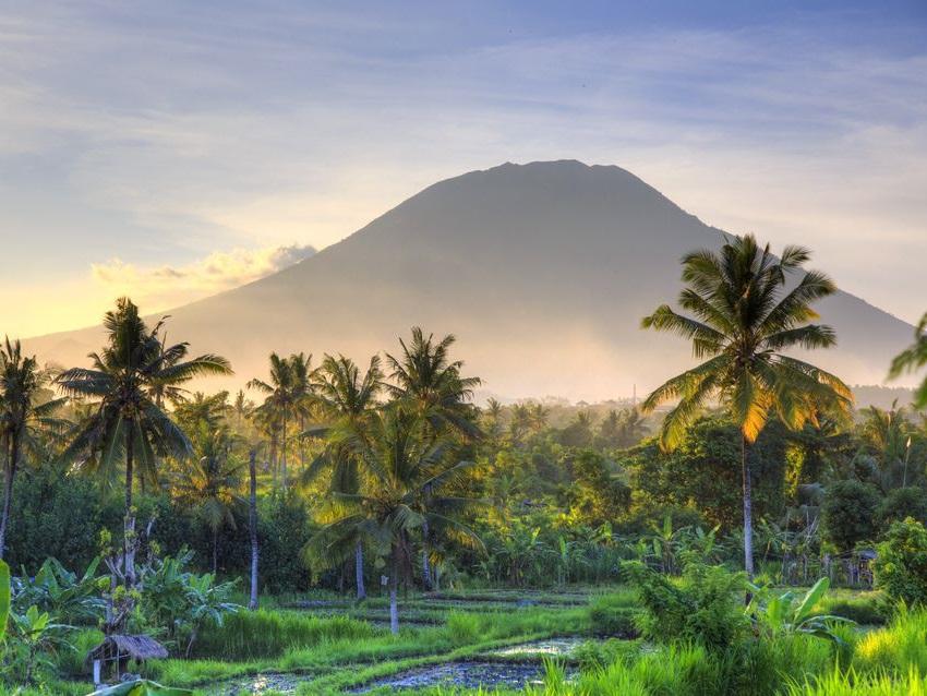 persoonlijk advies op maat rondreis en vakantie naar Indonesie